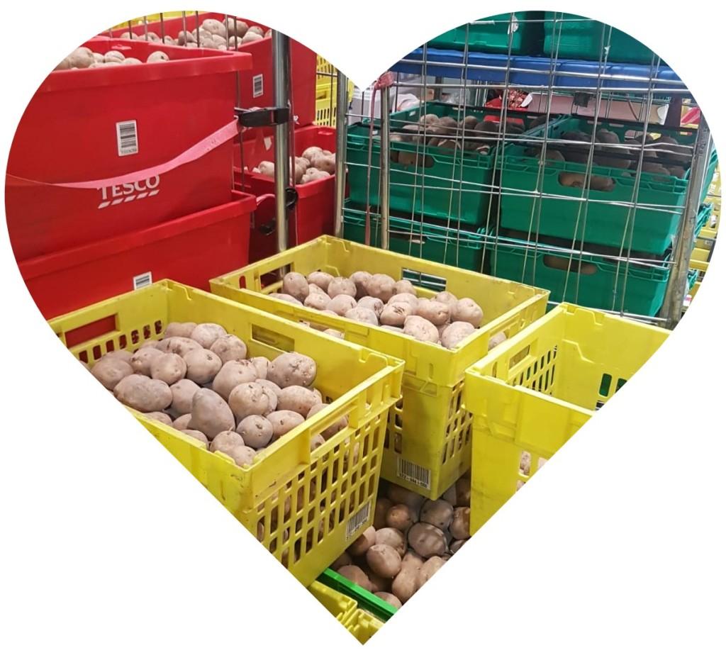 Crates full of potatoes