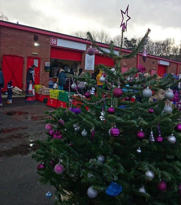Christmas Tree outside the Sharehouse